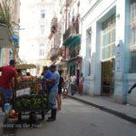 Cuba 11 : キューバで思うあれこれ