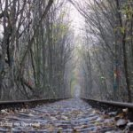 Ukraine 5 : キエフからリウネへ!季節外れの愛のトンネルで微妙な気持ちになった日